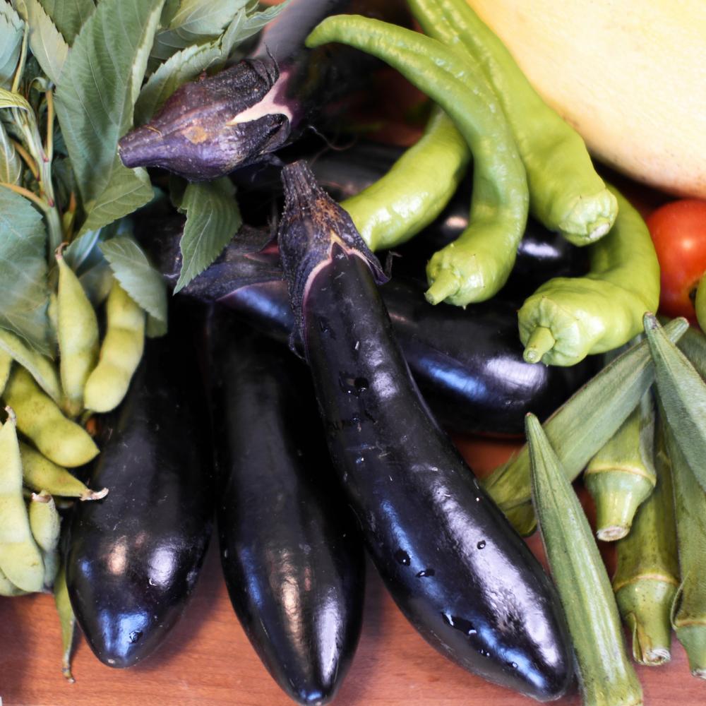 夏野菜いっぱい